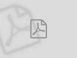 Icon for PDF