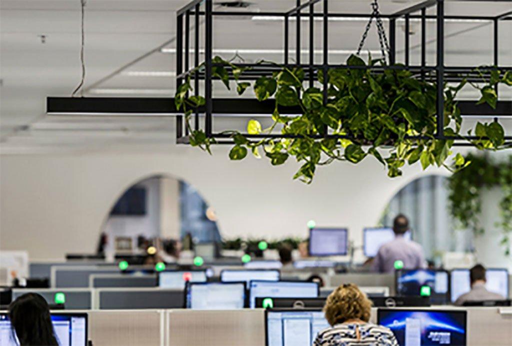 kuando Busylight Omega in a modern green office